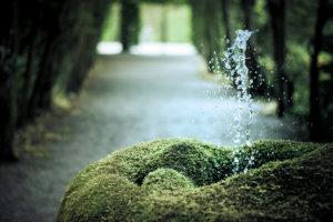 une-fontaine-naturelle-aux-jardins-deau-dannevoie