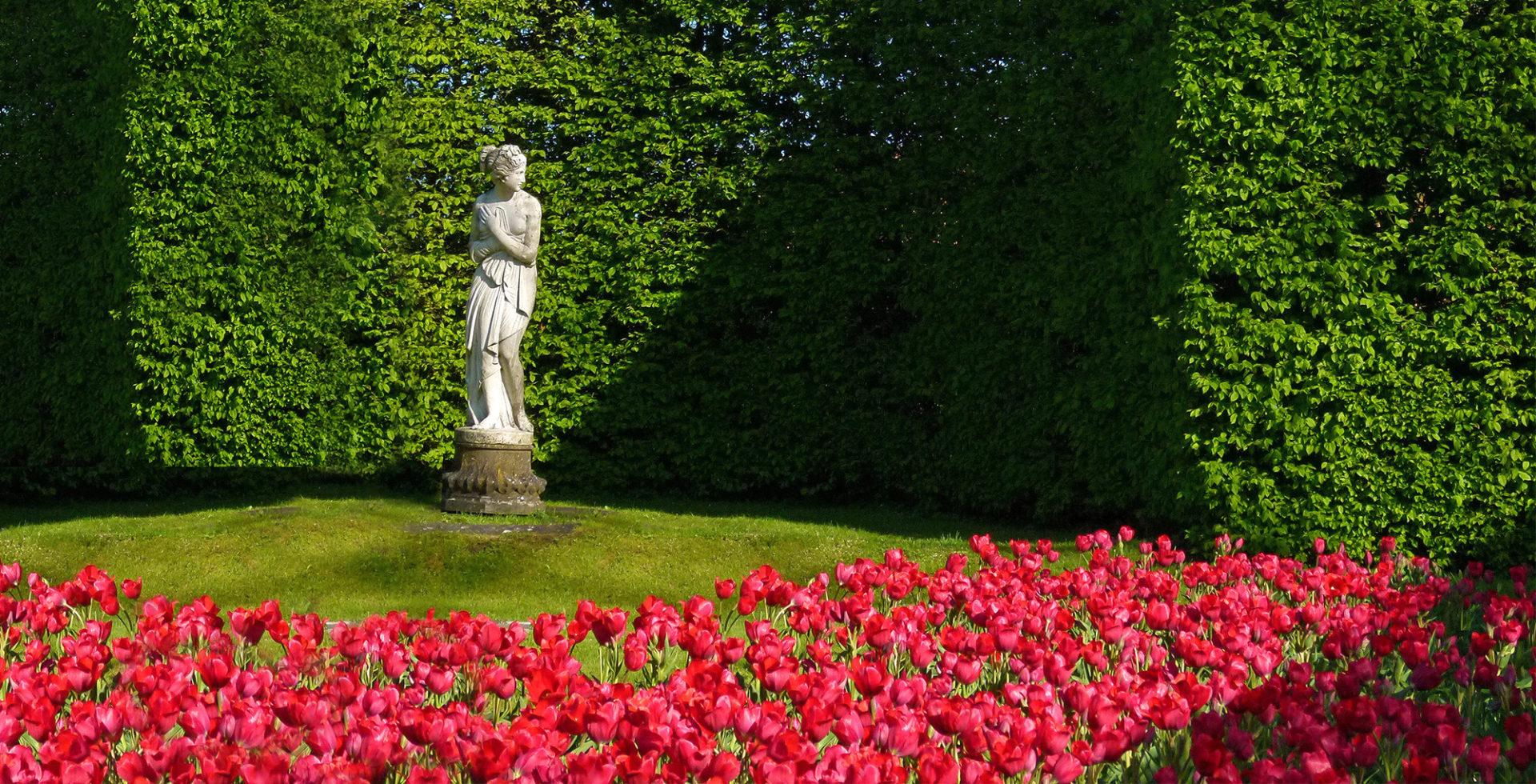 des-tulipes-aux-jardins-deau-dannevoie